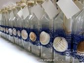 Pozivnica za vjenčanje - Poruka u boci Tamno plava školjka